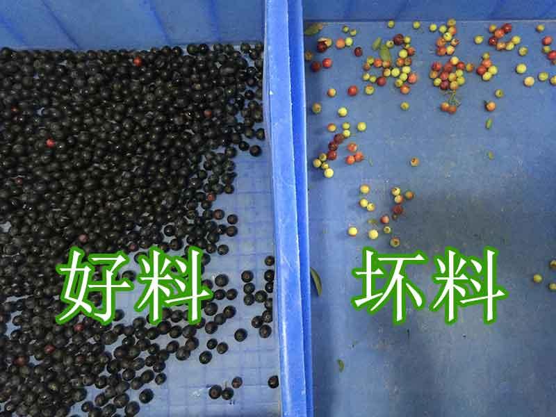 色选机|食品色选机|再生资源色选机|矿石色选机|履带色选机