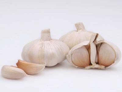 Garlic  Sorting